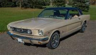 1966 ford mustang in rogers mn for sale 19 950. Black Bedroom Furniture Sets. Home Design Ideas